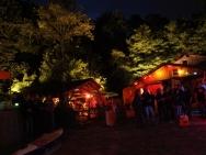 sandhaldenfest-2011124